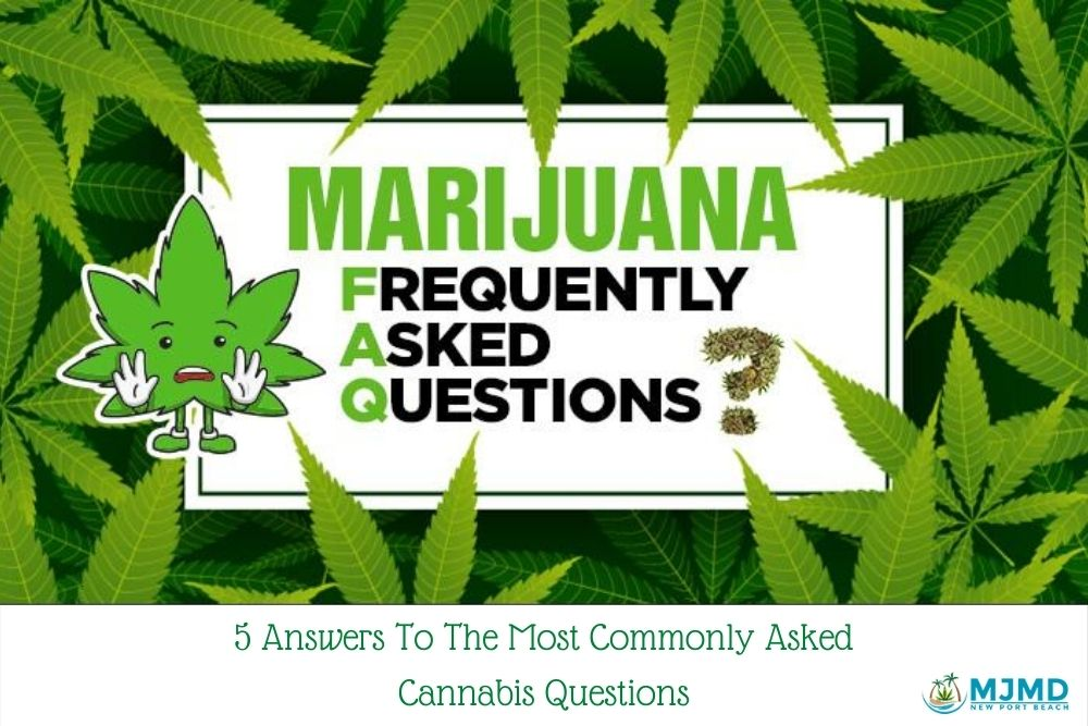 Commonly Asked Cannabis Questions